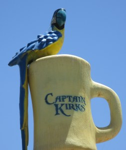 Look for Captain Kirk, the parrot, perched on top of Captain Kirk's, the coffee shop.