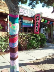 Look for the yarn bombed tree, the peace flag or the BGCB sign on Adams Ave.