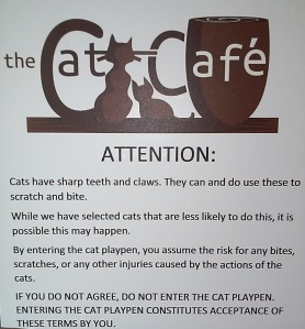 Cat Cafe rules